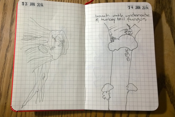 DRogalsketchbook1